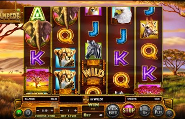 The New Stampede Slot Review From Betsoft Is Here!